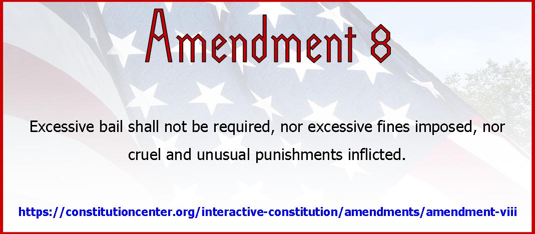 Amend 8
