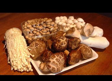 MushroomsFW