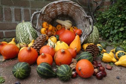 pumpkins-veggies puzzle